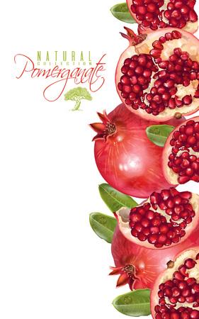 Illustration pour Pomegranate vertical banner - image libre de droit