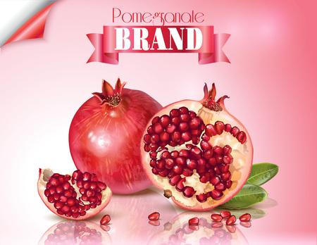 Illustration pour Pomegranate realistic illustration - image libre de droit