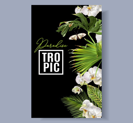 Illustration for Tropic orchid border - Royalty Free Image