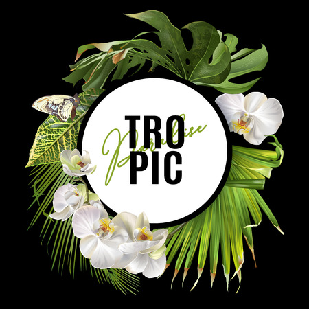 Illustration for Tropic round banner - Royalty Free Image