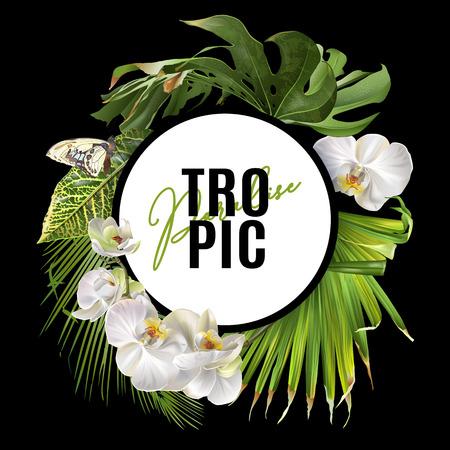 Tropic round banner