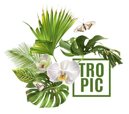 Illustration pour Tropic plants banner - image libre de droit