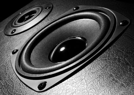 Two speakers, black and white close-up photo