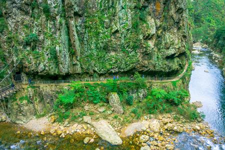 An unidentified people walking in natural walkway Karangahake Gorge, river flowing through Karangahake gorge surrounded by native rainforest, New Zealand