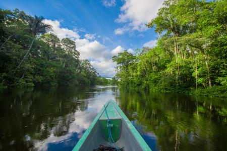 Photo pour Travelling by boat into the depth of Amazon Jungles in Cuyabeno National Park, Ecuador - image libre de droit