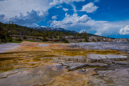 Mesa rock patterns at mamoth hot springs in Yellowstone National Park, in beautiful sunny day and blue sky in USA.
