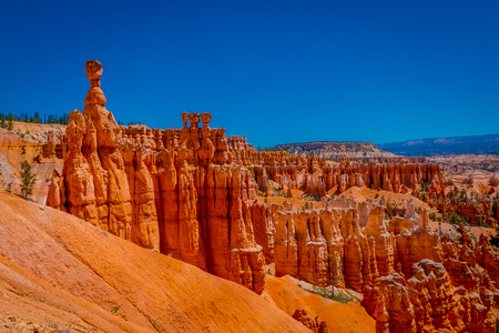 Great spires carved away by erosion in Bryce Canyon National Park, Utah, USA. The largest spire is called Thor's Hammer in USA.