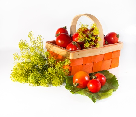 Composition with tomatoes and herbs in a basket for canning a white backgroundの写真素材