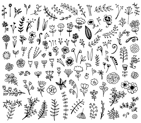 Floral hand drawn vintage set. Vector flowers and leaves collection. Sketch art illustration.