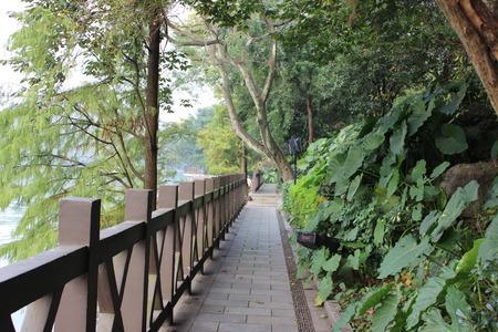 Qinguilong141200105
