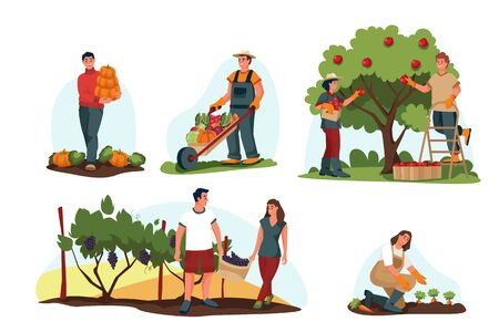 Fall harvesting and agriculture farming concept. Vector flat cartoon illustration. Farmers harvest autumn vegetables and fruits. People pick apples, pumpkins and grapes.のイラスト素材