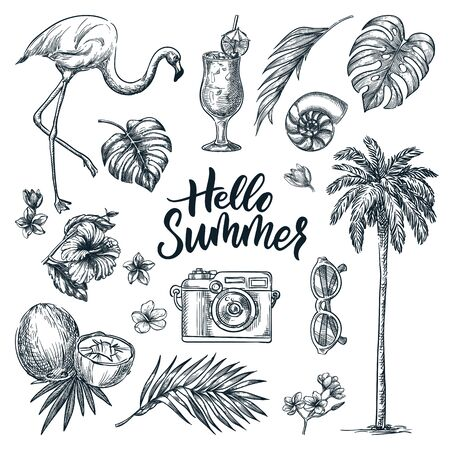 Photo pour Hello summer calligraphy lettering and tropical design elements set. Vacation, sea beach holiday hand drawn icons, isolated on white background. Vector doodle sketch illustration. - image libre de droit