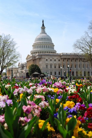 Capitol Hill Building, the symbolic landmark of US government