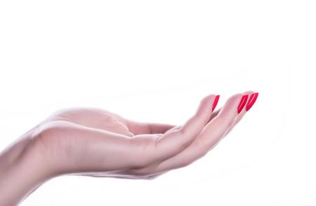 Photo pour palm up beautiful woman hand with French manicure nails - image libre de droit