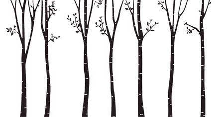 Illustration pour Birch Tree Silhouette Background - image libre de droit