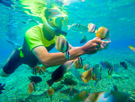 Photo pour Bunaken Indonesia June 20, 2020 : Tourist snorkeling in the tropical water. Traveling, active lifestyle concept. snorkeling mask dive underwater with fishes school in coral reef sea - image libre de droit