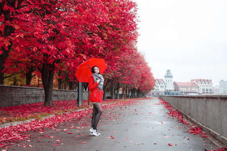 Foto für young girl in a red coat with an umbrella stands on the alley of the park after the rain on an autumn day - Lizenzfreies Bild