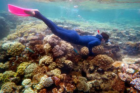 Woman snorkeling dive in the Great Barrier Reef Queensland Australia