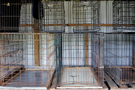 Empty metal cages in animal shelter. Animal care concept. and background