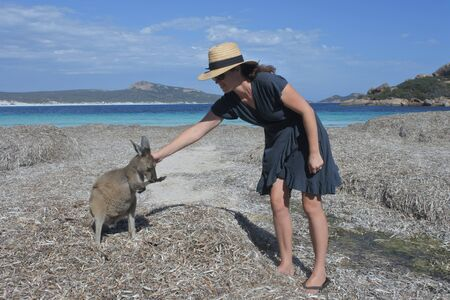 Adult Australian woman petting a Kangaroos in Lucky Bay Cape le grand Western Australia