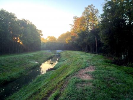 Amanecer en un arroyo