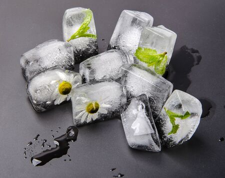 ice cubes with chamomile and mint in dark