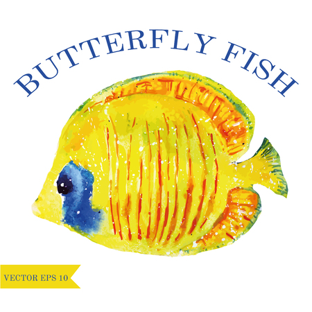 watercolor butterfly fish vector animal art