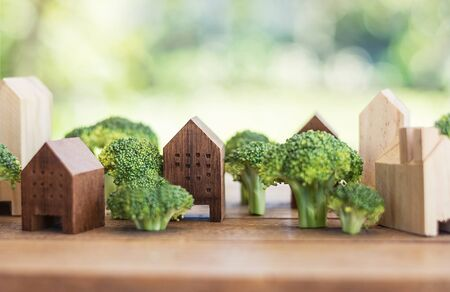 green town of broccoli tree, town of vegetable concept