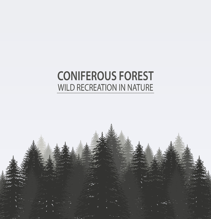 Illustration pour Coniferous pine forest. Camping - image libre de droit