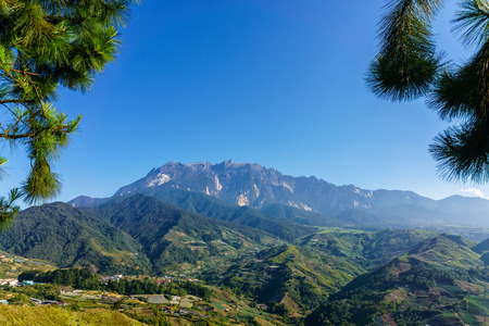 Foto de Mount Kinabalu naturally framed by leaves of pine tree at morning in Kundasang Sabah Malaysia - Imagen libre de derechos
