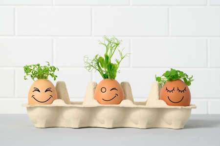 Photo pour Easter holiday concept with emotional chicken eggs in a tray. Eggs with funny faces and with green plant hair on white background. Different grimaces drawn on chicken eggs. Copy space - image libre de droit