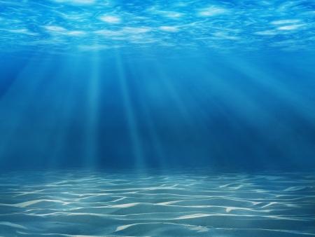 Tranquil underwater scene wi