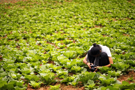 Photographer on the field