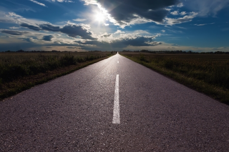 Asphalt road in the fields a