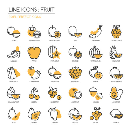 Fruit , thin line icons set ,pixel perfect icon