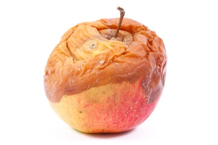 Foto de Old wrinkled moldy apple on white background, unhealthy and disgusting eating - Imagen libre de derechos