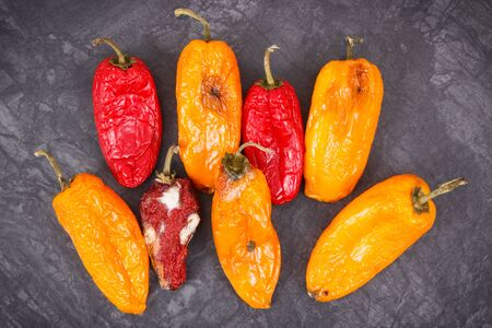 Foto für Old wrinkled peppers with mold, concept of unhealthy and disgusting food - Lizenzfreies Bild