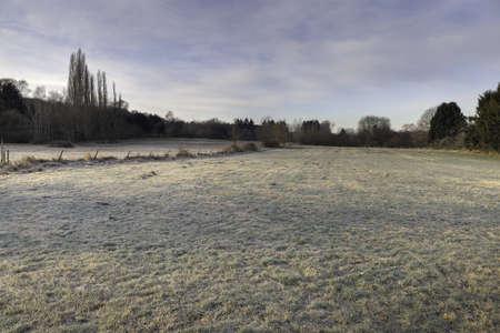 Feld/Wiese im Winter
