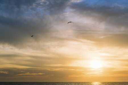 Photo pour gulls flying over the sea across the spectacular cloudy sky at sunset, freedom concept, copy space for text - image libre de droit
