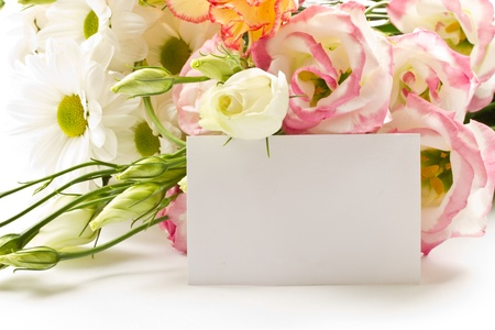 a bouquet of beautiful flowers on a white background