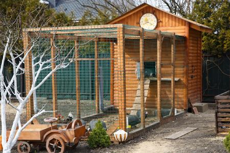 beautiful wooden chicken house at home farmstead