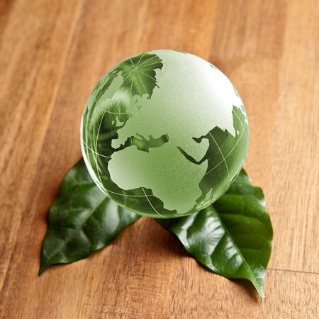 Green Glass globe on wooden background with leaves