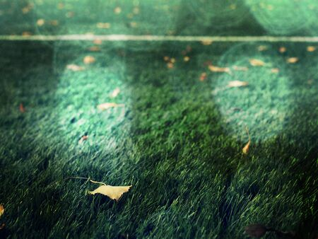 Foto per Soccer training field in abstract filter. Flare dots - Immagine Royalty Free