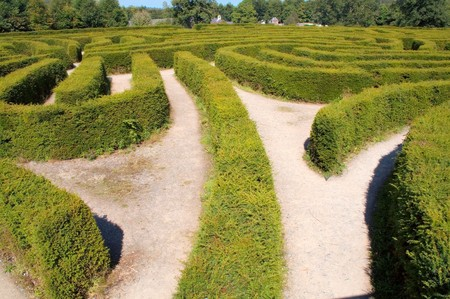 Europe's largest maze at Castlewellan Ireland