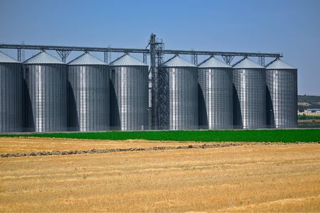 grain metal silver silo in the industry of agriculture
