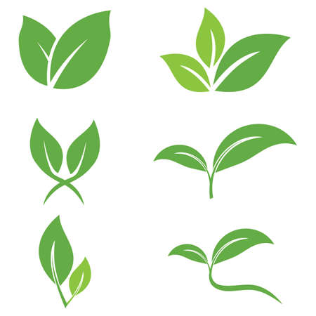 Illustration for Leaf icon Vector Illustration design Logo template - Royalty Free Image