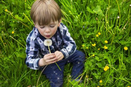 cute little kid holding a dandelion