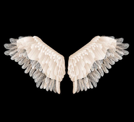 Illustration pour Vector wings with feathers isolated on black background. - image libre de droit