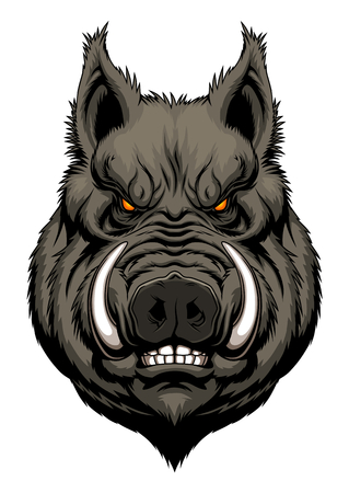 Illustration for Angry boar head - Royalty Free Image