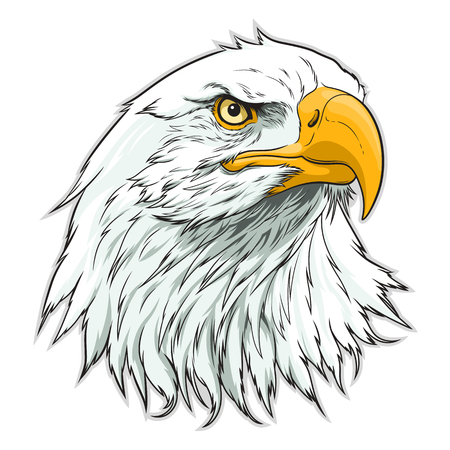 Illustration for American eagle head - Royalty Free Image